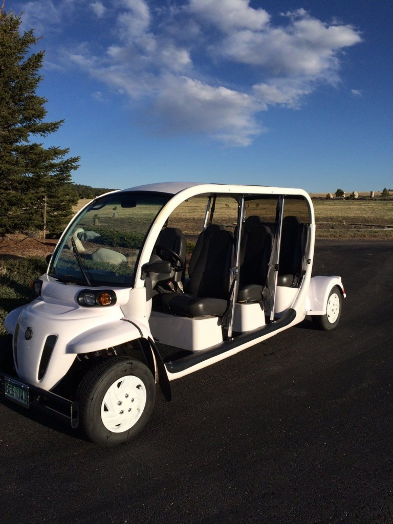 2007 GEM E6 Six Passenger Electric Golf Cart Great ...