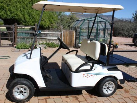 Electric Golf Cart 2007 Fairplay ZX Model for sale