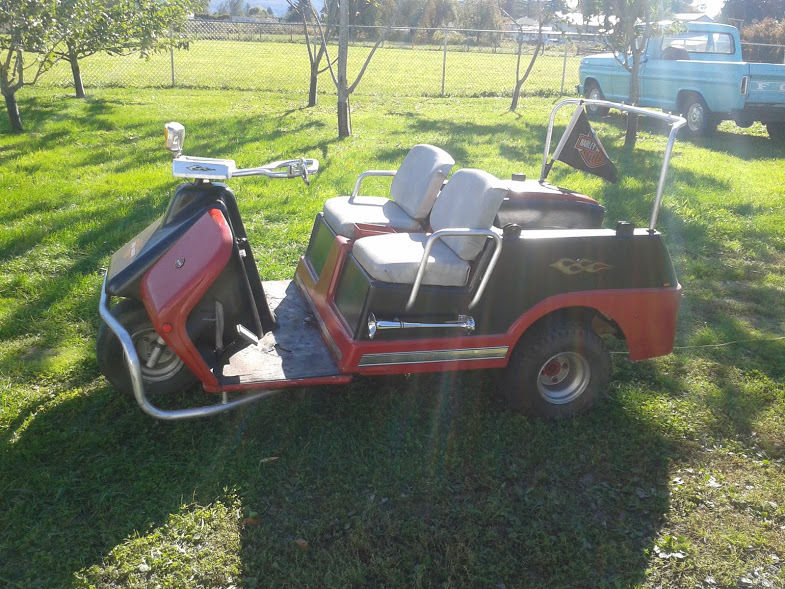 Harley Davidson Gas 3 Wheel Golf Cart