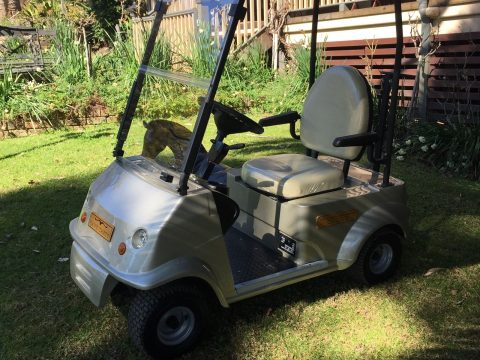 brand new 2015 Hawk GOLF CART for sale