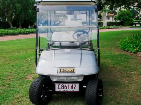 fully serviced 2004 EZGO Freedom Golf Cart for sale
