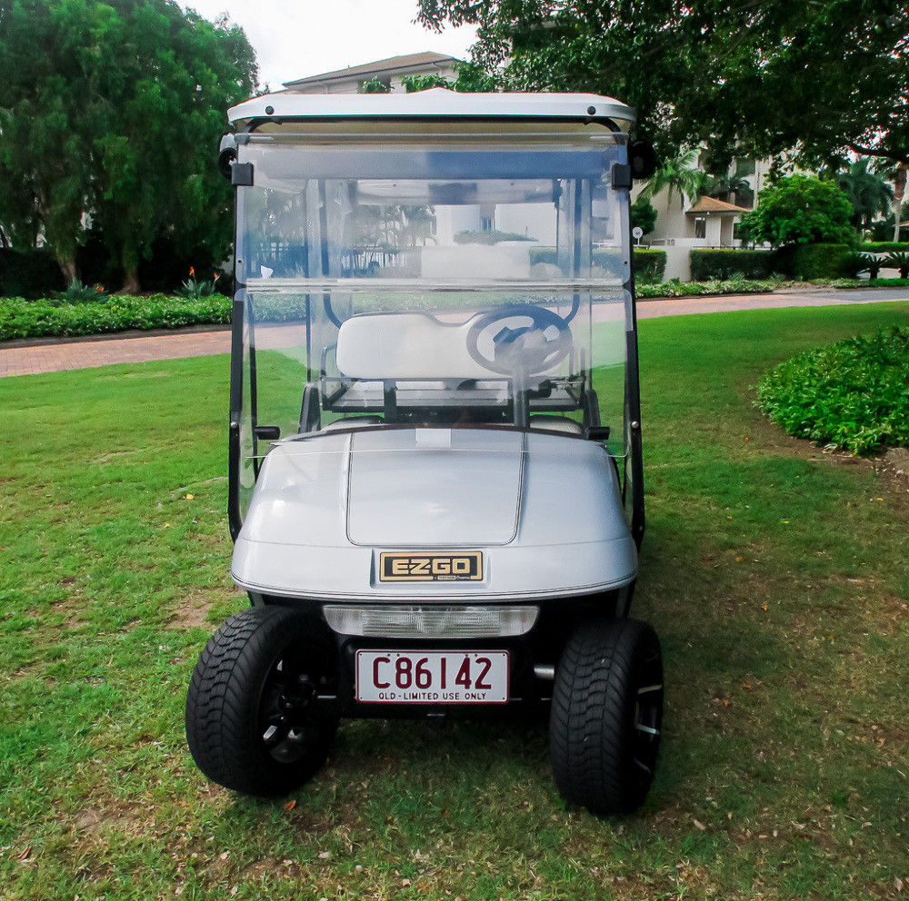 fully serviced 2004 EZGO Freedom Golf Cart
