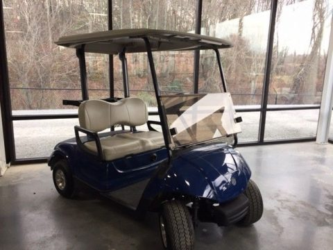 Completely Serviced 2014 Gas Golf Cart for sale