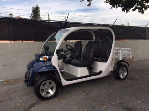 deluxe 2013 Gem Car golf cart for sale