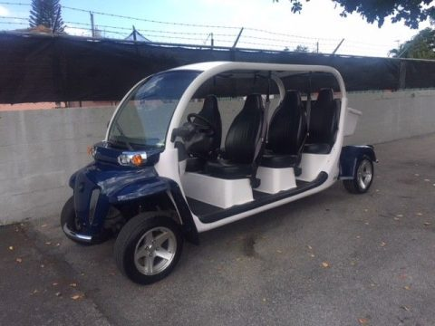 deluxe package 2014 Gem golf Cart for sale