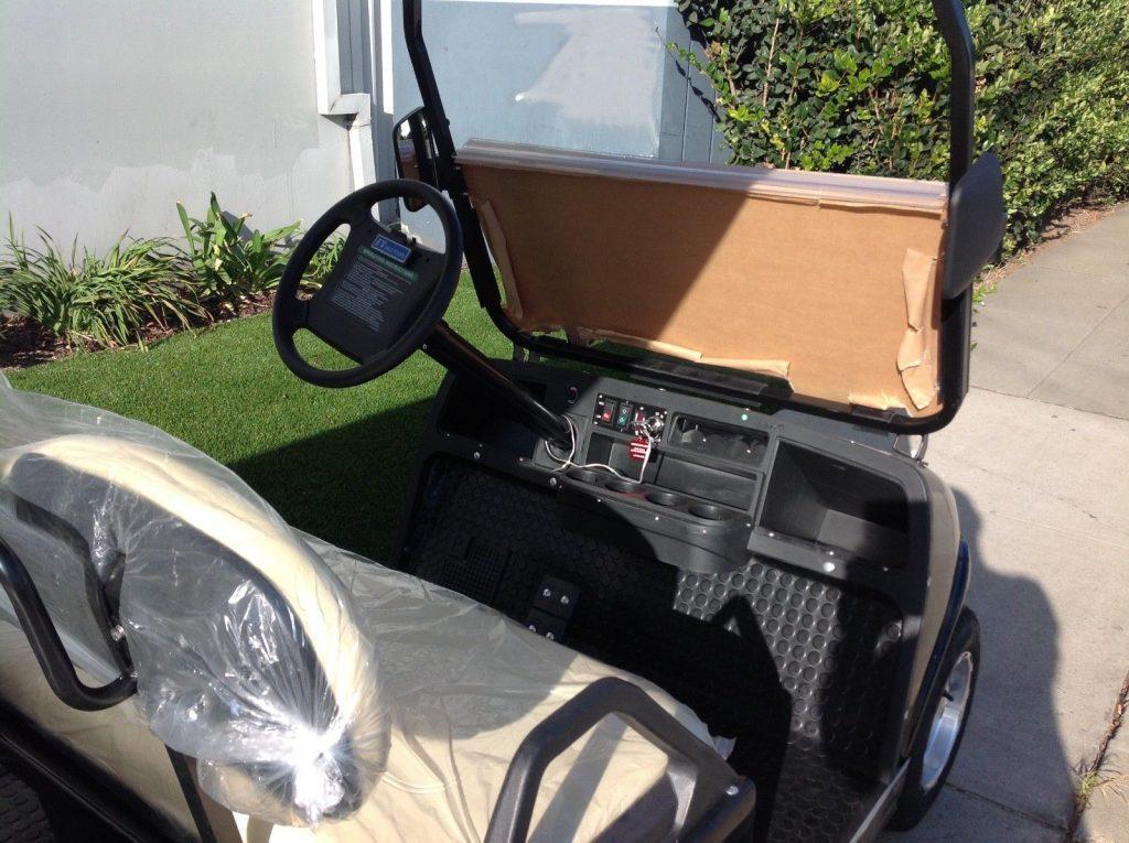 Brand New 2018 Black Evolution Golf Cart Limousine For Sale