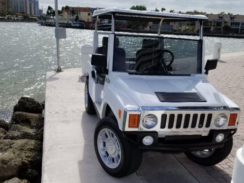 custom equipped 2017 ACG Hummer Electric Golf Cart for sale