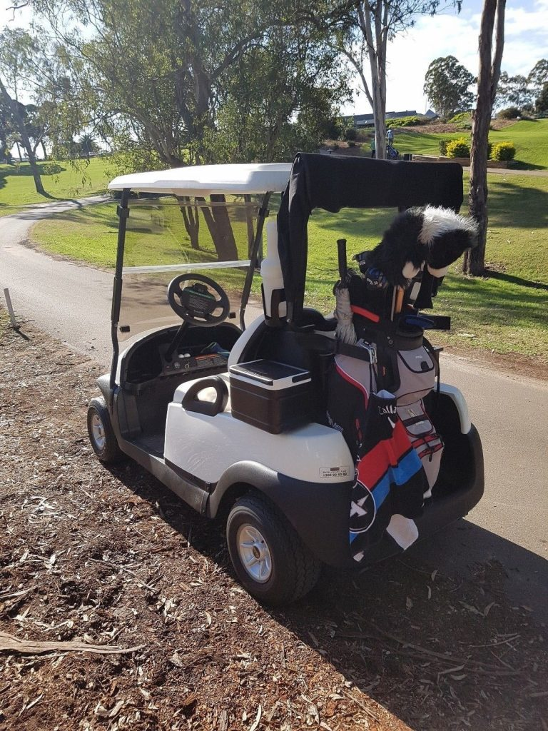 some extras 2011 Club Car Precedent Golf Cart