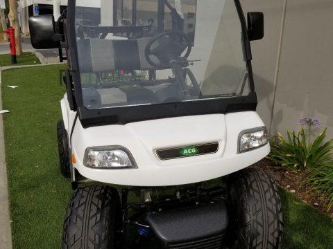 Custom 2015 ACG T Sport Lifted Custom golf cart for sale