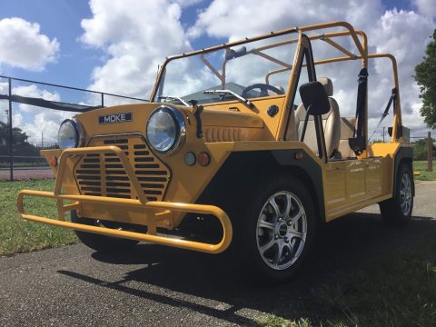 custom bodied 2016 ACG golf cart for sale