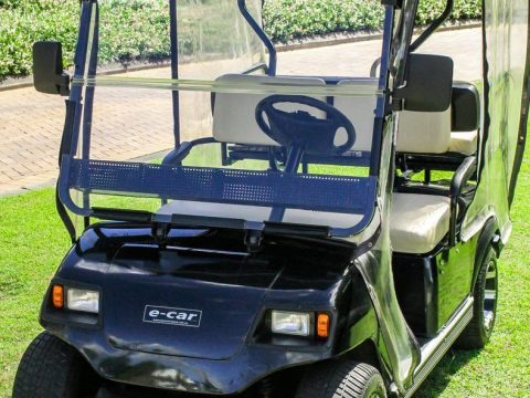 fully serviced 2016 ECAR golf cart for sale