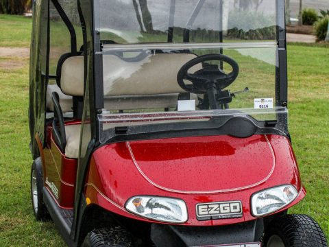 newer batteries 2009 EZGO RXV 4 Seat golf cart for sale