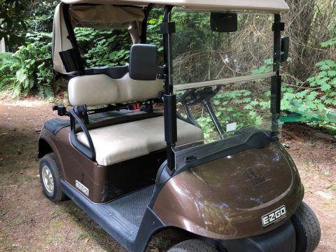 great shape 2015 EZGO RXV 48v golf cart for sale