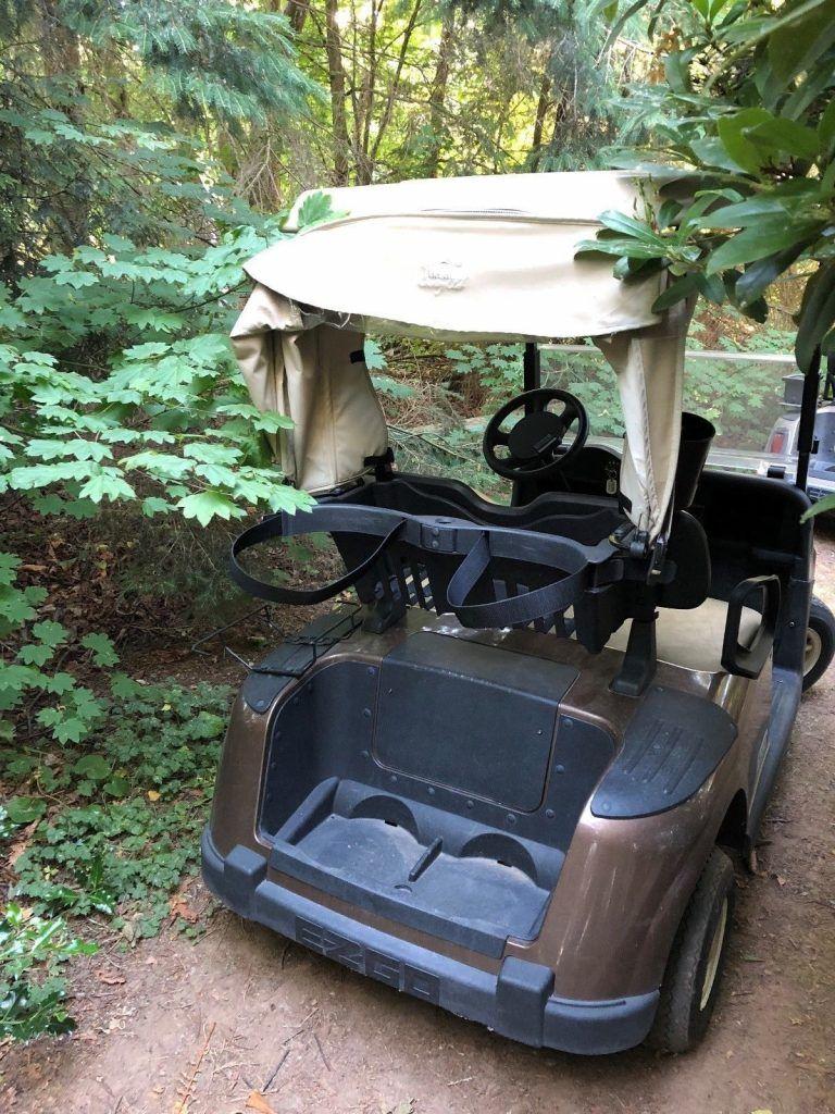 great shape 2015 EZGO RXV 48v golf cart
