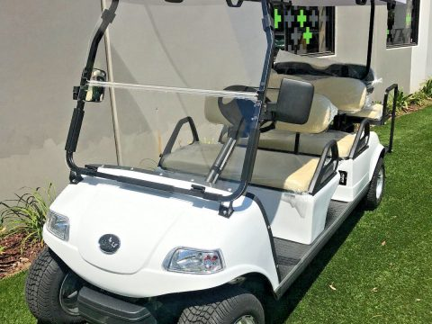 very nice 2017 White Evolution Golf Cart for sale