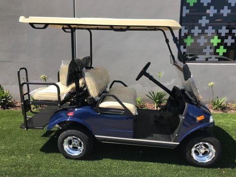 great shape 2018 Blue Evolution EV Golf Cart for sale