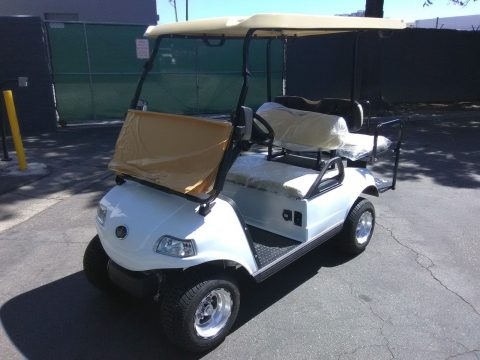 very nice 2018 White Evolution EV Golf Cart for sale