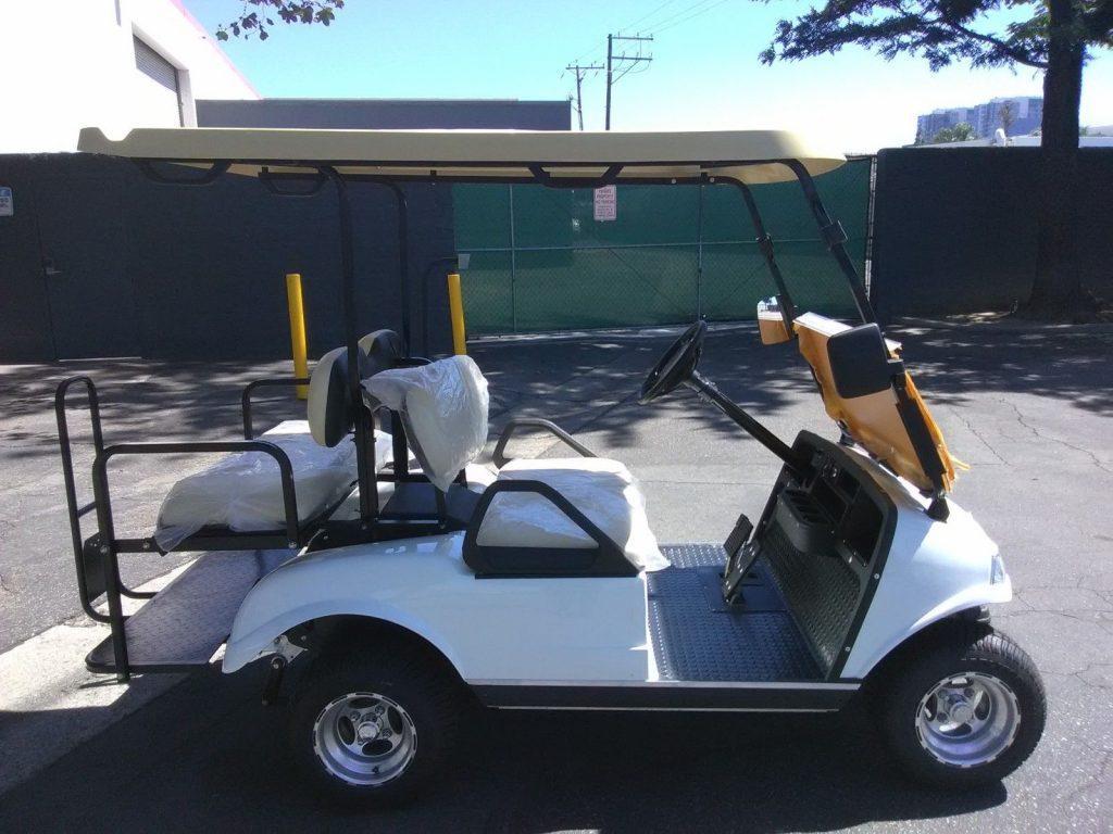 very nice 2018 White Evolution EV Golf Cart