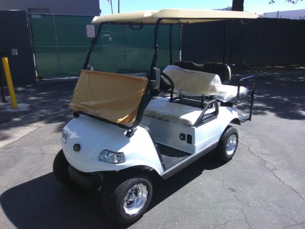 brand new 2018 Evolution EV Golf Cart