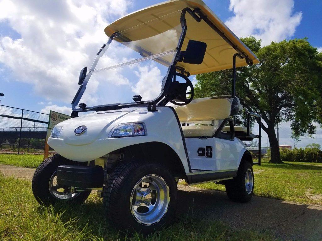 great shape 2018 Evolution Golf Cart
