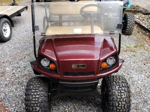 mint 2018 EZGO Express golf cart for sale