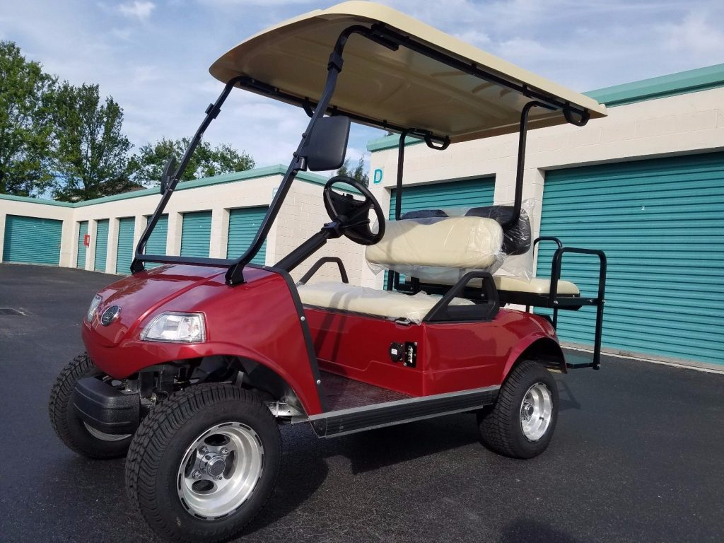 well optioned 2018 Evolution EV Golf Cart