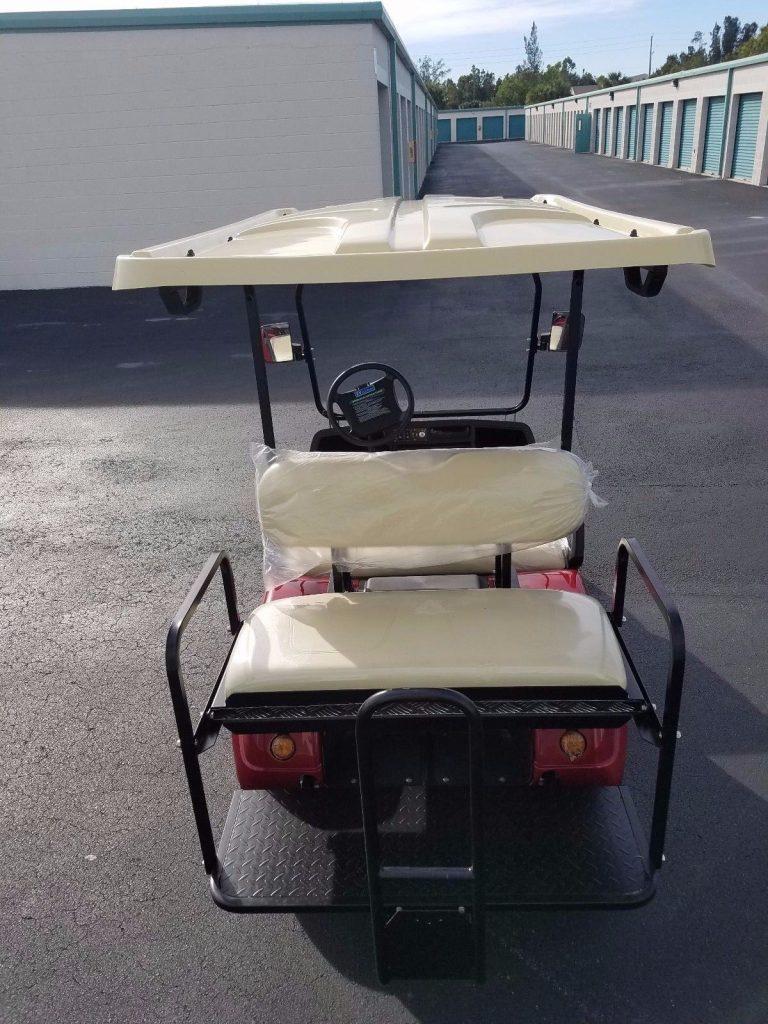 well optioned 2018 Evolution EV Golf Cart