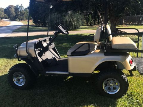 Brand New Batteries 2013 EZGO golf cart for sale