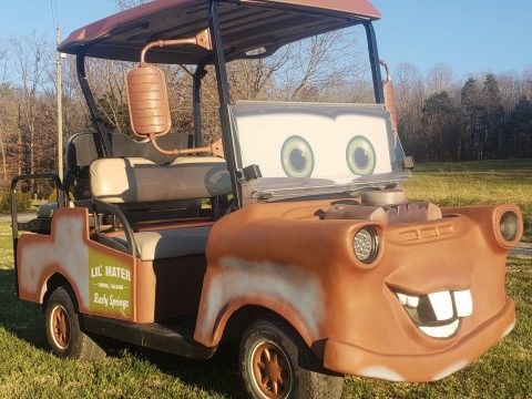 Lil Mater 2014 EZGO RXV Golf Cart for sale