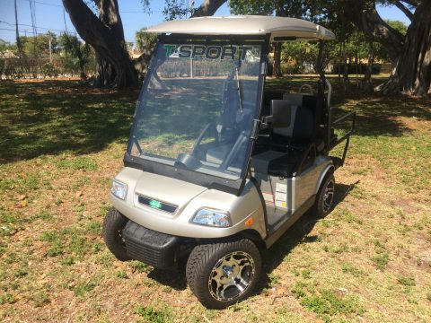 well equipped 2017 acg T Sport Golf Cart for sale