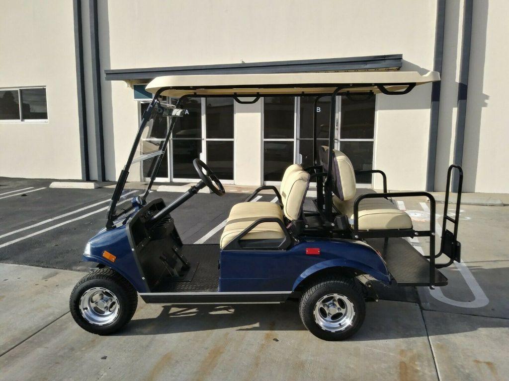 beautiful 2018 Evolution EV Golf Cart