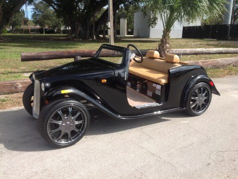 custom bodied 2018 acg Roadster Golf Cart for sale