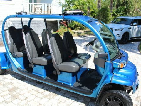 Unique and Totally Custom 2011 GEM golf cart for sale