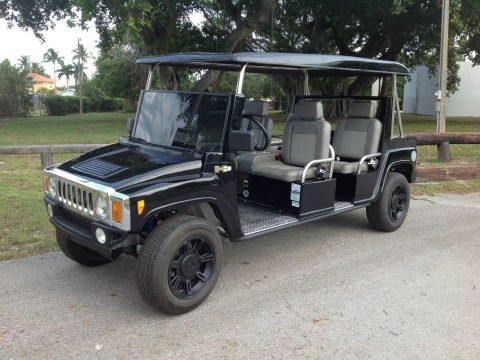well equipped 2015 ACG Golf Cart for sale