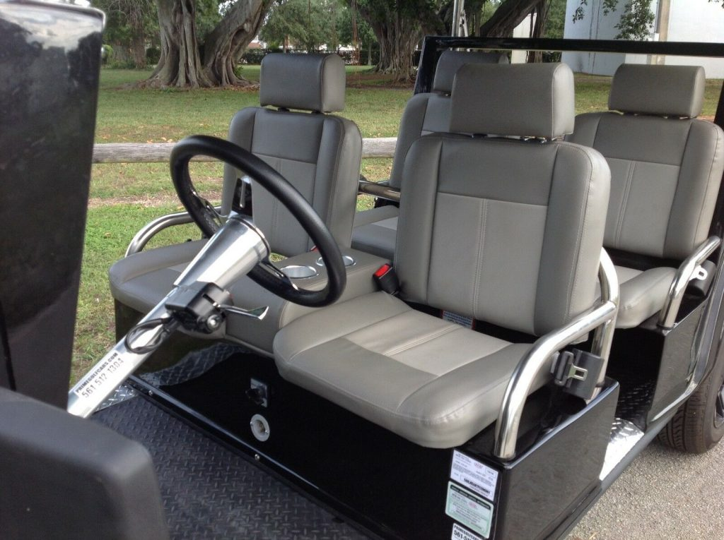 well equipped 2015 ACG Golf Cart