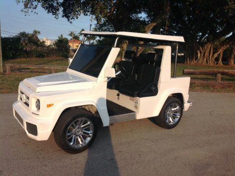 very nice 2017 ACG E Wagon Golf Cart for sale