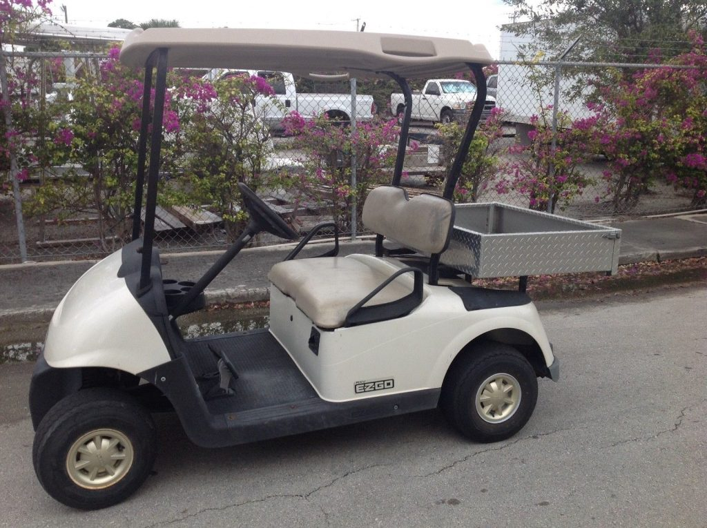 strong batteries 2010 EZGO rxv golf cart