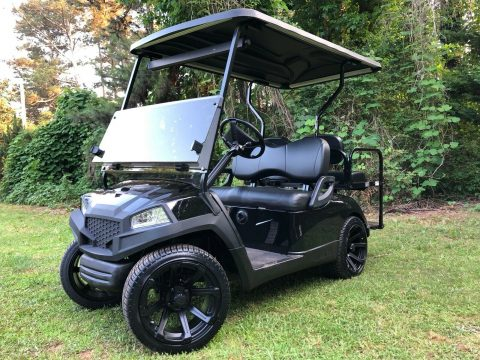 New Batteries 2016 Yamaha Drive G29 Golf Cart for sale