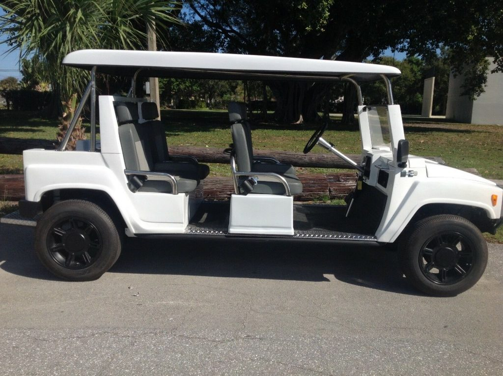 very nice 2015 ACG Golf Cart