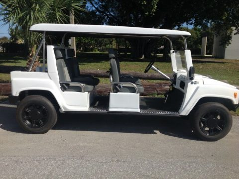 very nice 2015 ACG Golf Cart for sale