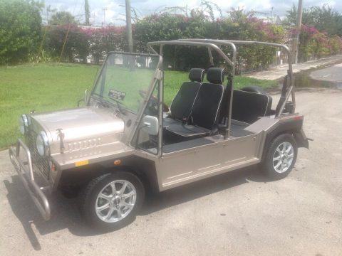 nice 2018 acg Mini Moke Golf Cart for sale