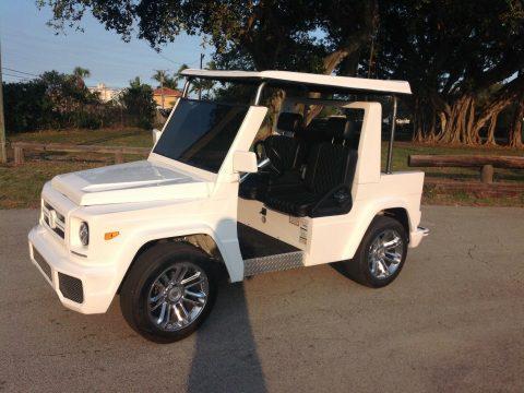 stunning 2018 Acg E Wagon Custom Golf Cart for sale