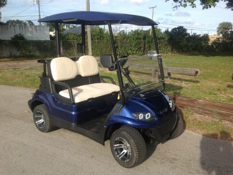 very nice 2019 ICON I20 Golf Cart for sale