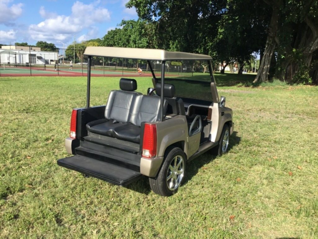custom body 2008 ACG Golf Cart