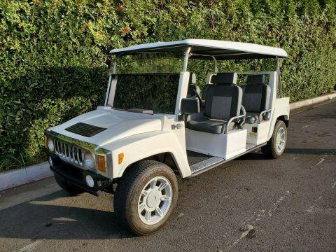 custom 2012 ACG Golf Cart for sale