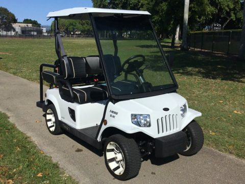 new batteries 2017 Tomberlin Emerge E2 golf cart for sale