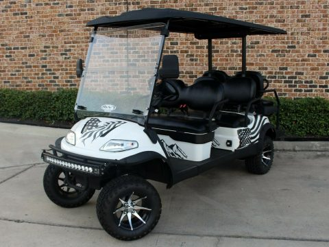 lifted 2019 Advanced EV golf cart for sale