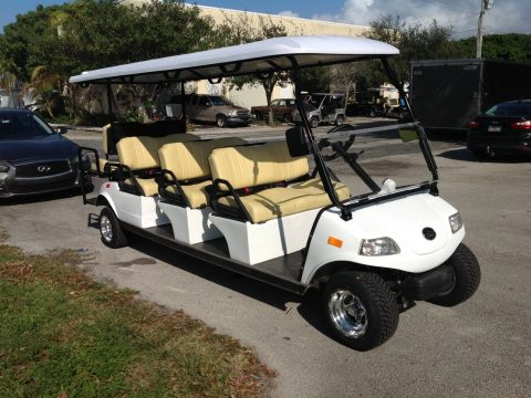 limo carrier 2019 Evolution Golf Cart for sale